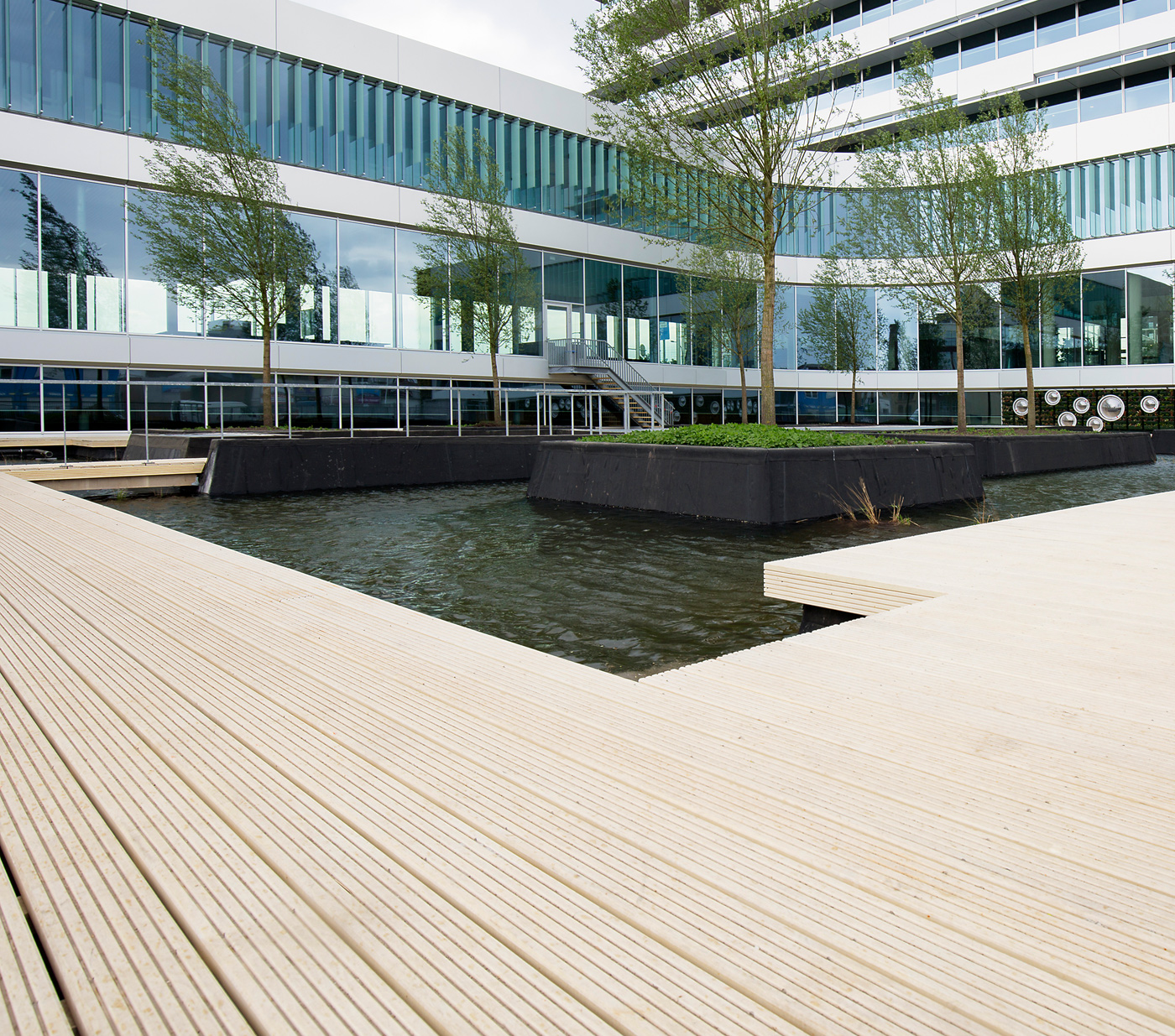 Things to consider when choosing timber for decking