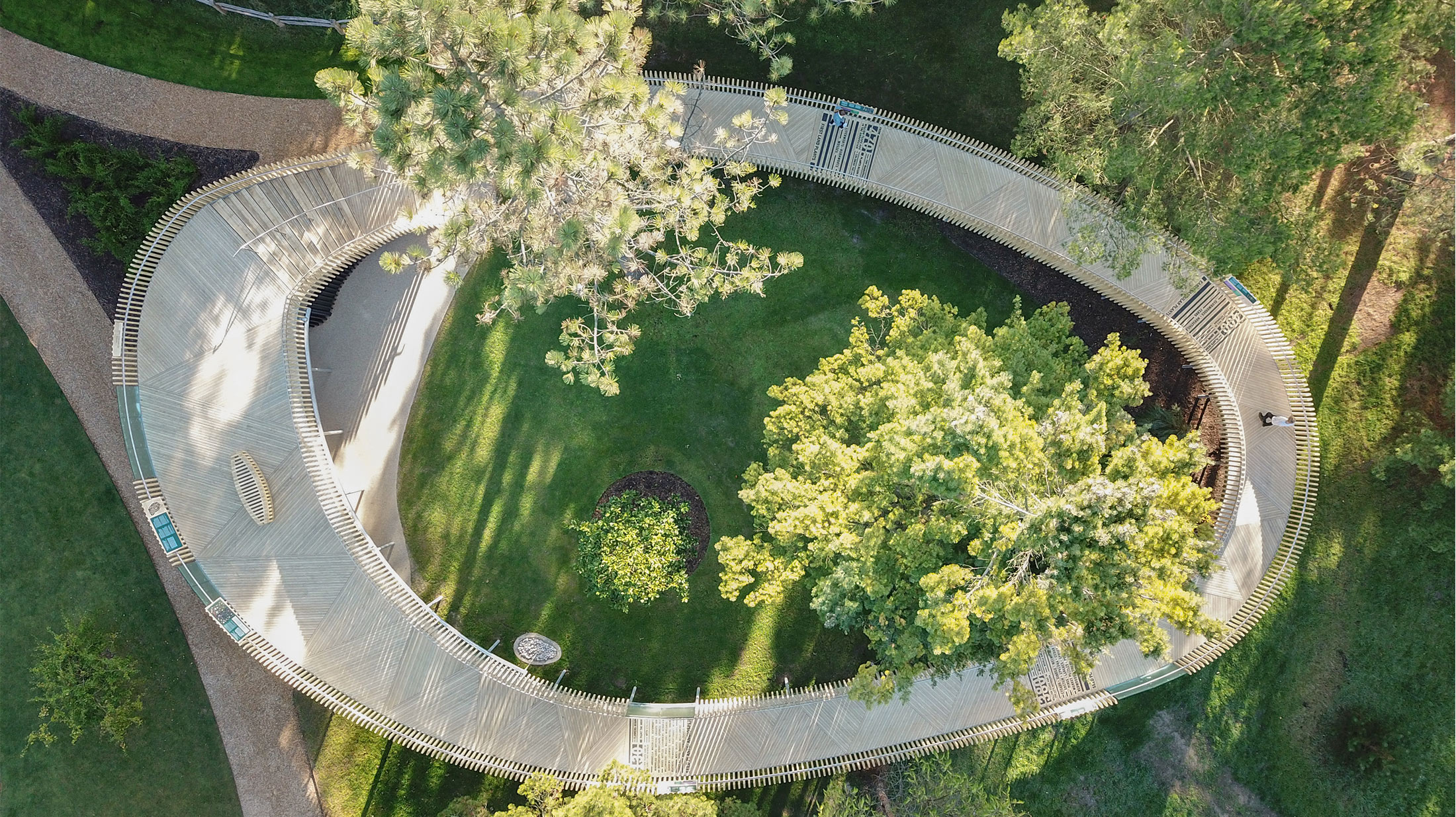 Ariel view from above at the Cambridge botanic gardens. The rising path is made from accoya wood and goes around in a full circle.