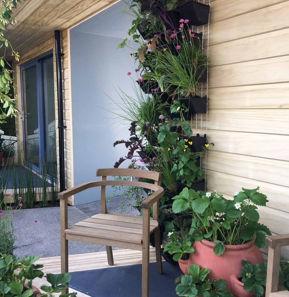 Accoya cladding, wooden chair and strawberry plant