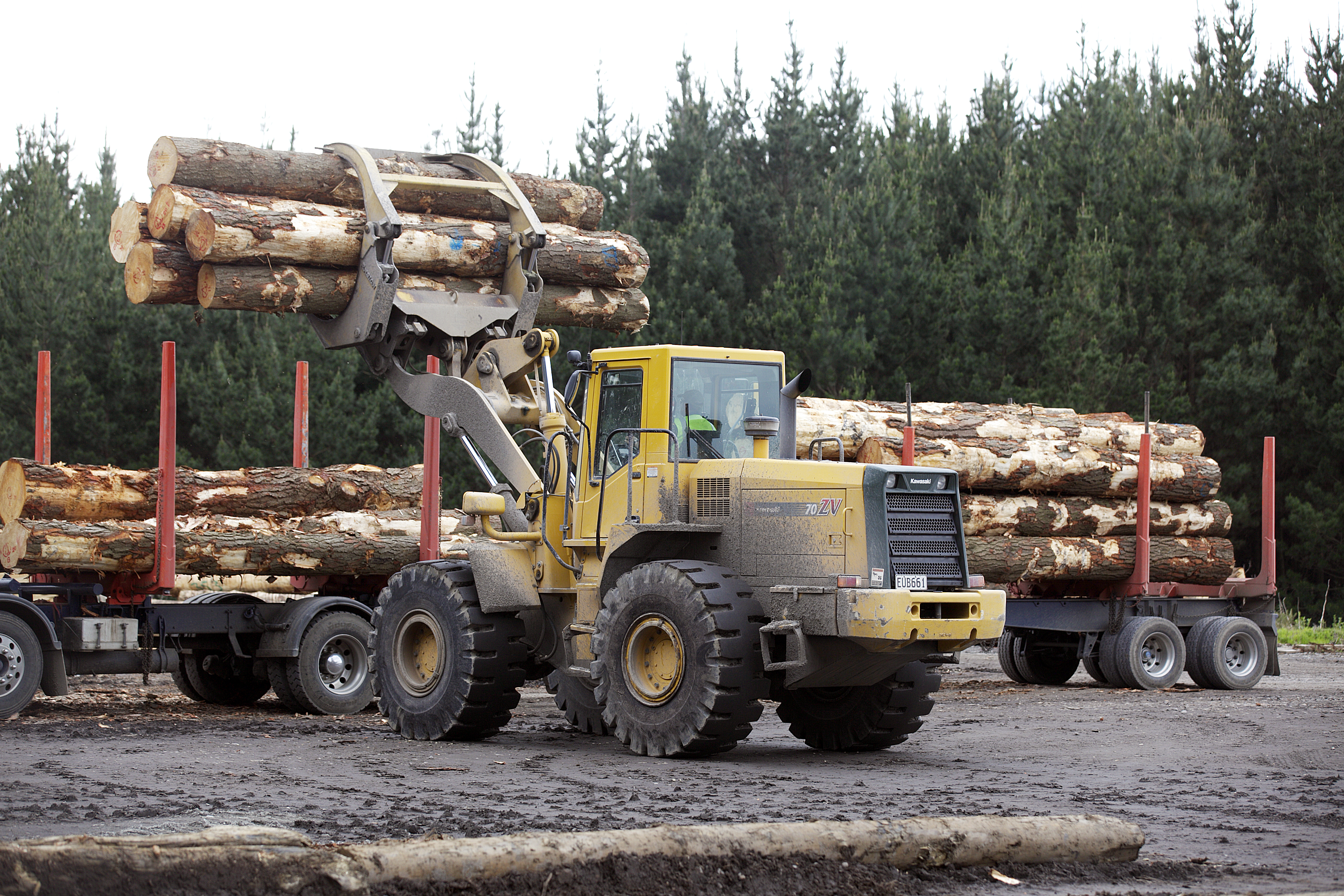 What is sustainable timber?